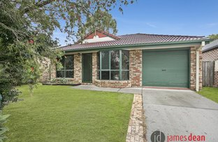 Picture of 141 Torquay Crescent, Tingalpa QLD 4173