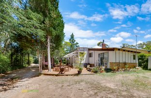 Picture of 56 Lawson View Parade, Wentworth Falls NSW 2782