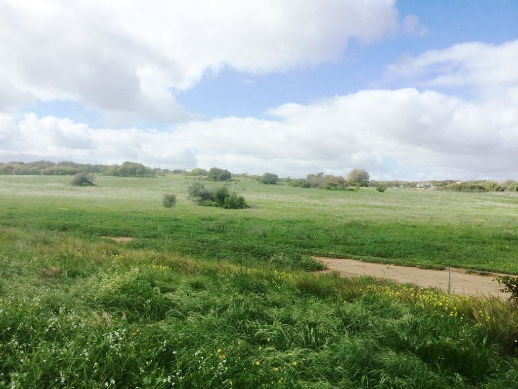 * The Midlands Road, Dongara WA 6525, Image 2