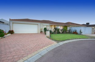 Picture of 3 Pear Place, Spearwood WA 6163
