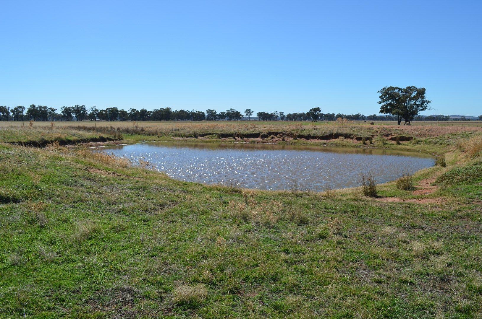 - 'Wildwood' 71 Wilesmith Road, Temora NSW 2666, Image 0