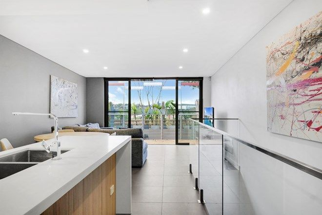 Picture of 17/300 Johnston Street, ANNANDALE NSW 2038