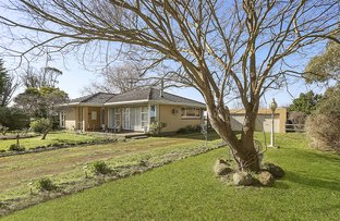 Picture of 526 Penshurst-Port Fairy Road, Kirkstall VIC 3283