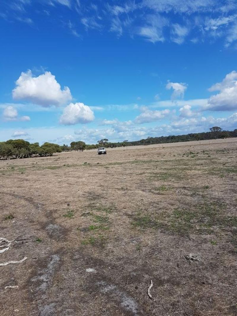 Lot 152 Pickles Road, Narrikup WA 6326, Image 1