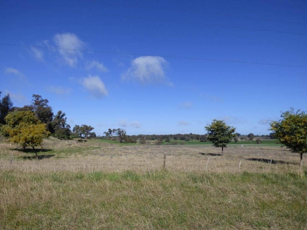 Lot262&263 Burley Griffin Way, Wallendbeen NSW 2588, Image 2