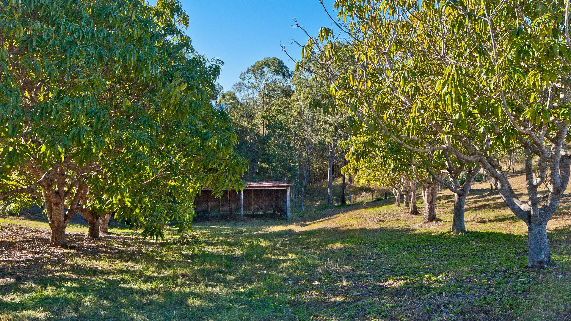 Armstrong Creek QLD 4520, Image 1