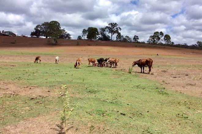 Picture of 700 Watalgan Road, WATERLOO QLD 4673