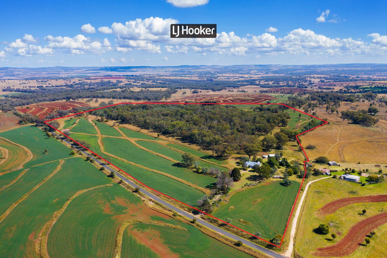 913 Nullamanna Road, Inverell NSW 2360, Image 1