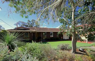 Picture of 30 Albatross Pass, Willetton WA 6155