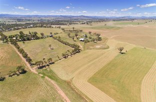 Picture of 222 Burgmanns Lane, Tamworth NSW 2340