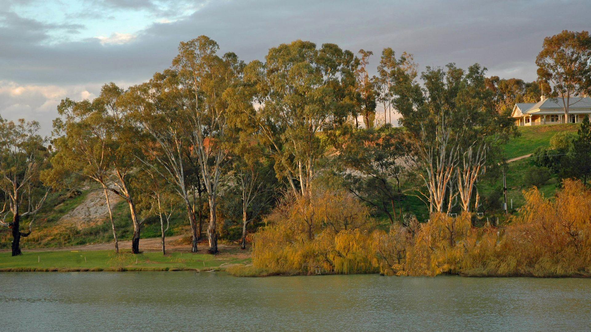 6 Lookout Drive, Paringa SA 5340, Image 2