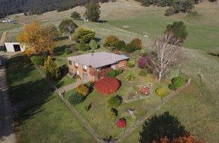 Christmas Hill - 120 Bago Forest Road, Tumbarumba NSW 2653