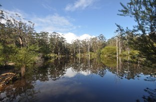 Picture of Lot 8670 Gumnut Road (Meerup), Northcliffe WA 6262