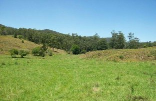 Picture of Yarranbella NSW 2447