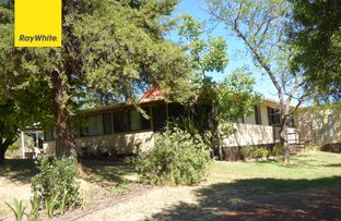 Picture of 720 Old Bundarra Road, Inverell NSW 2360