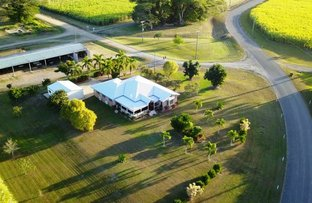 Picture of 986 Halifax Road, Cordelia QLD 4850