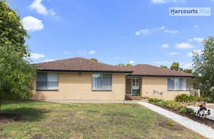 Picture of 2 Molvig Court, Trott Park SA 5158