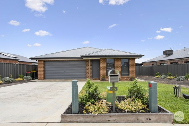 Picture of 36 Hills Road, MARONG VIC 3515
