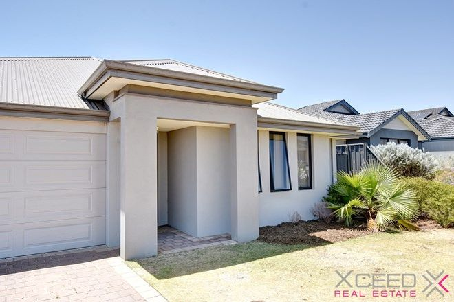 Picture of 14 Teasel Way, BANKSIA GROVE WA 6031