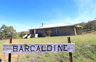 Picture of Cambalong Road, Bombala NSW 2632