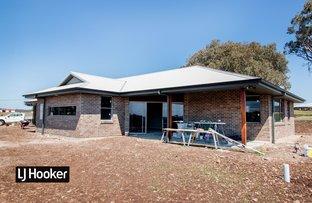 Picture of 9 Talbragar Close, Inverell NSW 2360