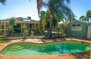 Picture of 8 Bilby Place, Gosnells WA 6110