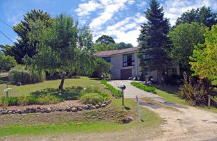 Picture of 55 Queen Street, Bombala NSW 2632