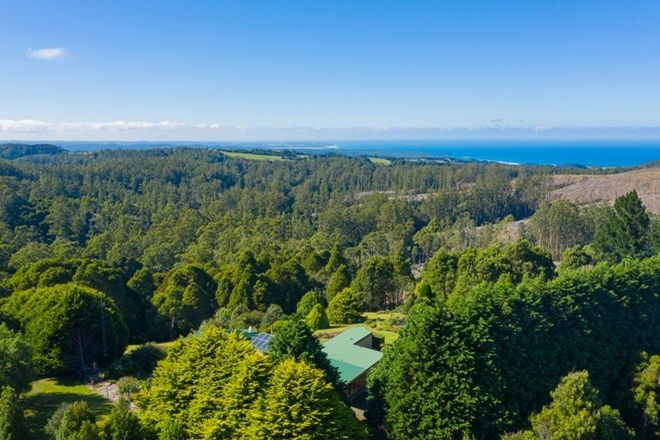 Picture of 5159 Great Ocean Road, LAVERS HILL VIC 3238