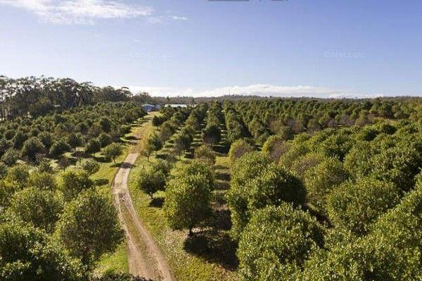 234 Heinemann Rd, Redland Bay QLD 4165, Image 1