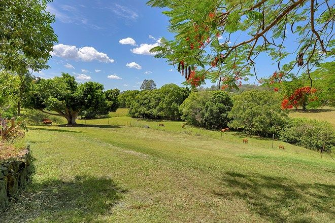 Picture of 10/50 Burnside Road, PERWILLOWEN QLD 4560