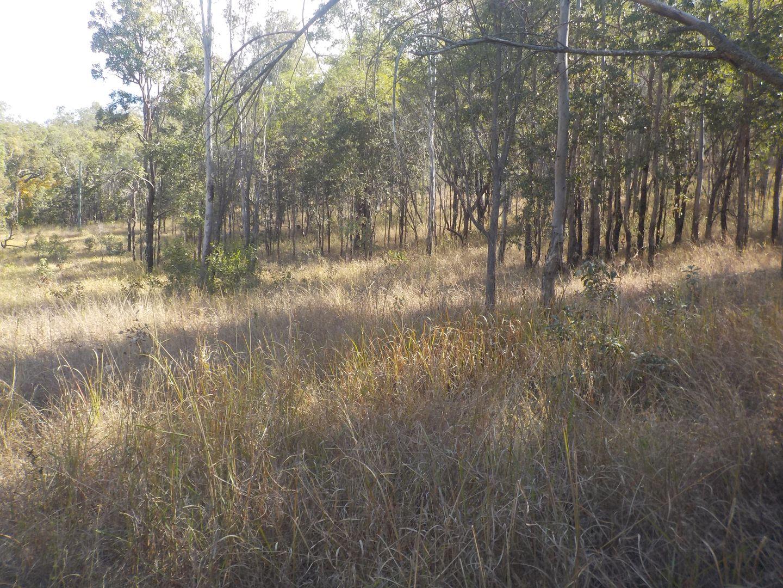 Lot 11 gaeta rd, Gaeta QLD 4671, Image 2