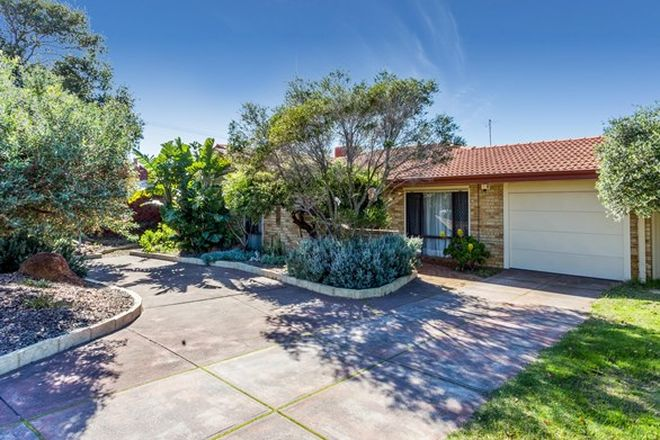 Picture of 59 Petterson Avenue, KARDINYA WA 6163