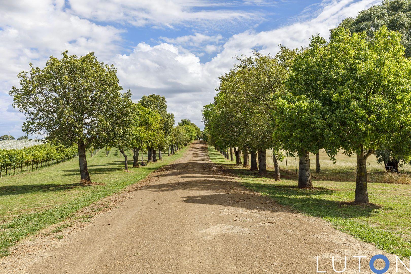 215 Rye Park Road, Rye Park NSW 2586, Image 1