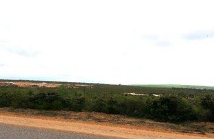green head Road, Green Head WA 6514