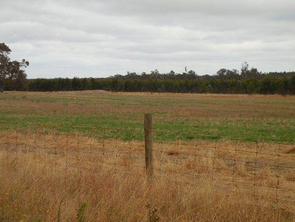 Lot 2810 Eulup-Manurup Road, Mount Barker WA 6324, Image 1