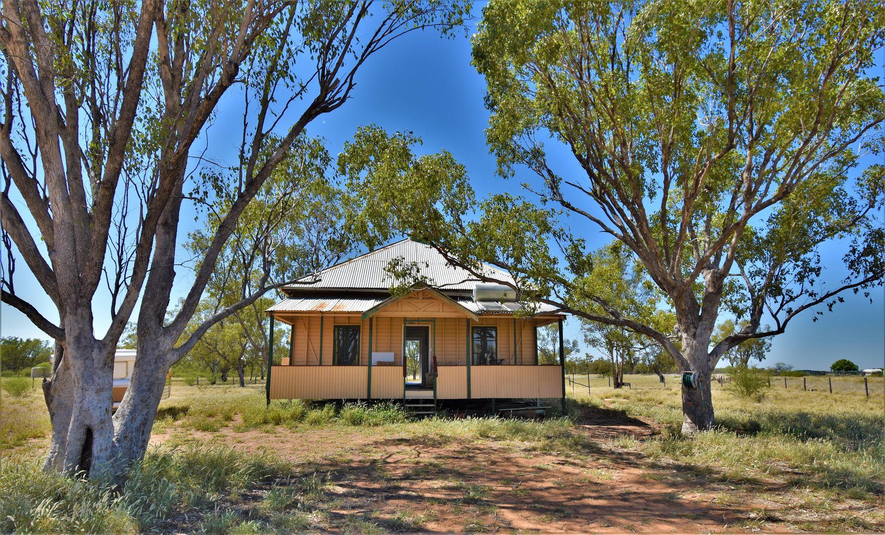 51 Lancewood Drive, Barcaldine QLD 4725, Image 0