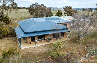 "Picture of ""Wongaburra"" 2319 Mitchell Highway, Molong NSW 2866"