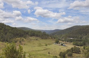 Picture of 46 Bunning Creek Road, Yarramalong NSW 2259
