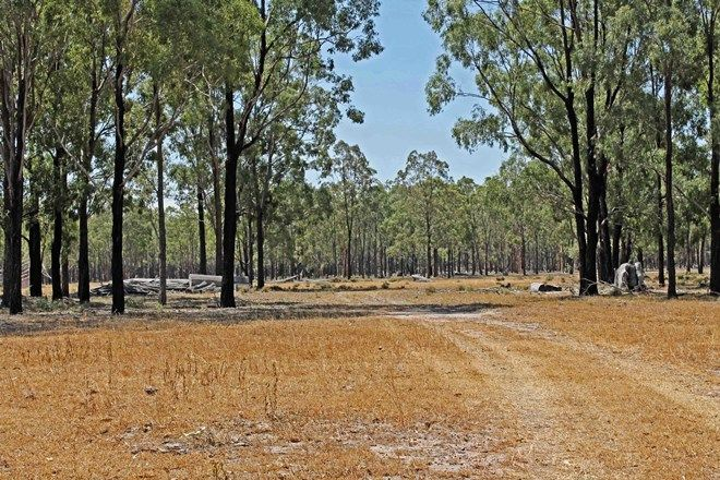 Picture of Lot 6 Cunningham Highway, THANE QLD 4370