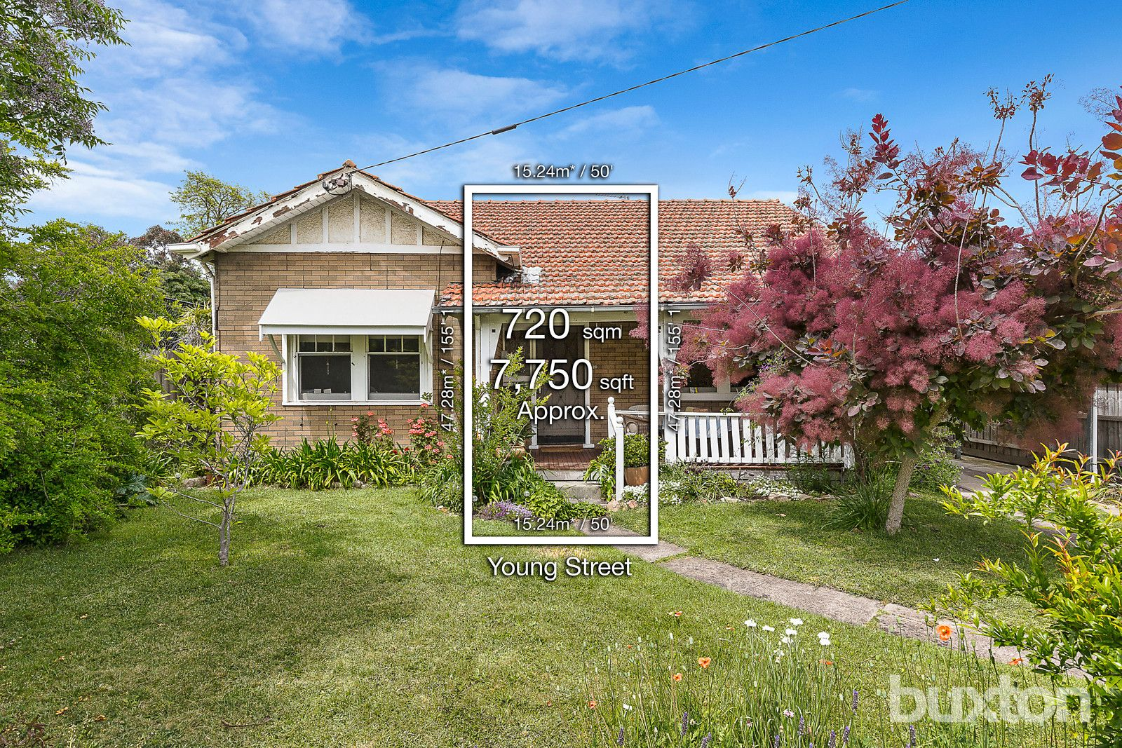 20 Young Street, Brighton VIC 3186, Image 0