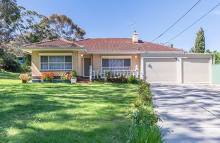 Picture of 1 Cypress Avenue, Glenalta SA 5052