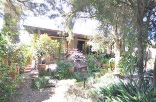 Picture of 1084 Alemein Avenue, North Albury NSW 2640