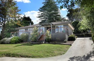 Picture of 94 Badger Creek Road, Healesville VIC 3777