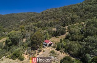 Picture of 524 Nottingham Road, Wee Jasper NSW 2582