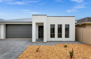 Picture of 52a Wattle Avenue, Royal Park SA 5014
