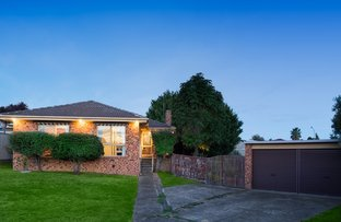 Picture of 5 Cove Court, Endeavour Hills VIC 3802