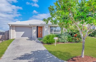Picture of 56 Augusta Boulevard, Pimpama QLD 4209