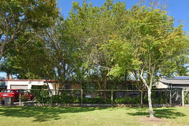Picture of 17 Lows Drive, PACIFIC PARADISE QLD 4564