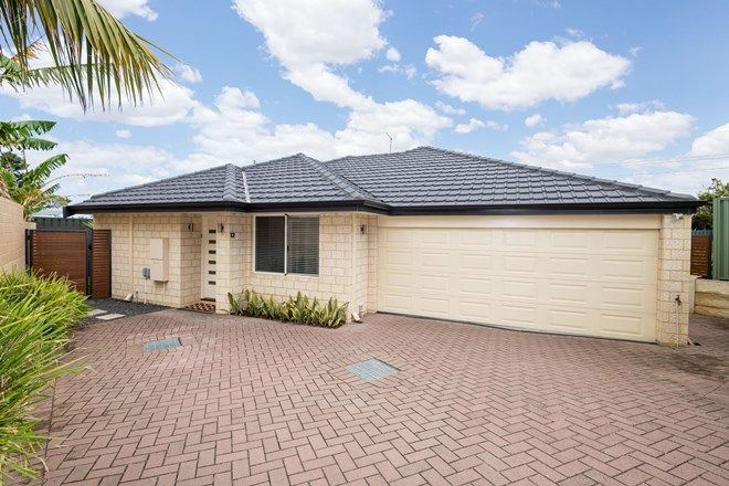 Picture of 12 Colreavy Place, PADBURY WA 6025