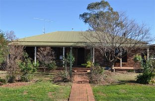 Picture of 206 Farnell Street, Forbes NSW 2871